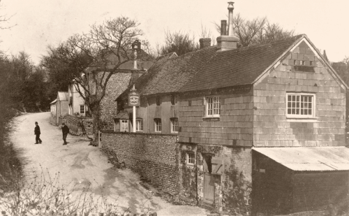 The Shepherd and Dog in the 1900s