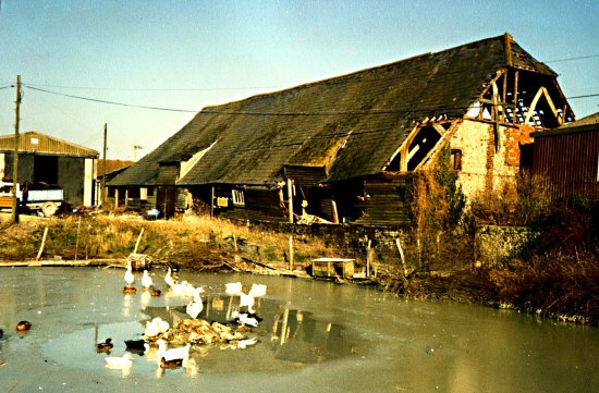 Perching Barn in 1987 after the great storm