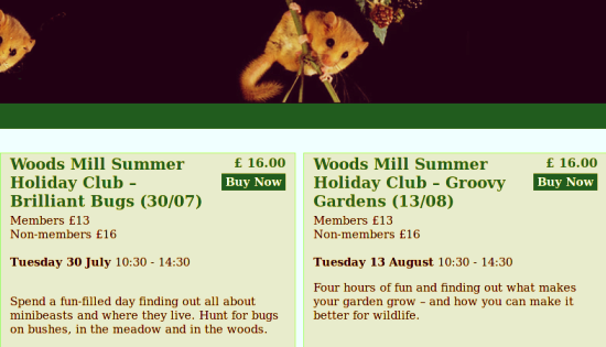 Sussex Wildlife Trust Holiday Club at Woods Mill