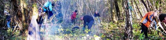 Tottington Woodlanders at work