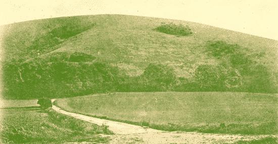 Wolstonbury Hill in winter