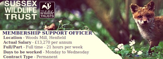Membership Support Officer at Woods Mill