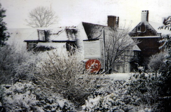 Arbor Vitae in the winter of 1991 by Stuart Howgrave-Graham