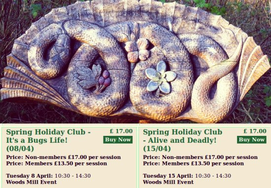 Spring Holiday Clubs 2014