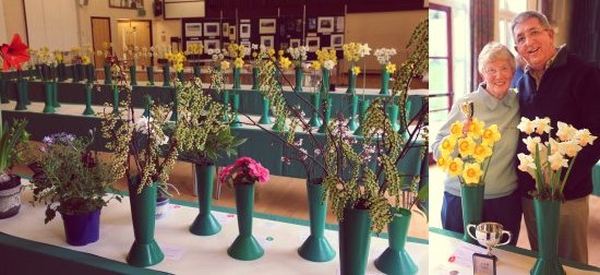 Steyning Horticultural Society Spring Show