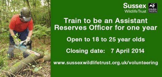 Assistant Reserves Officer Sussex Wildlife Trust