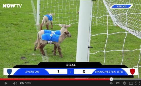 Lamb football in Newtimber