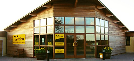 Dogs Trust Shoreham