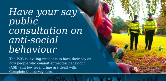 Anti-social behaviour survey