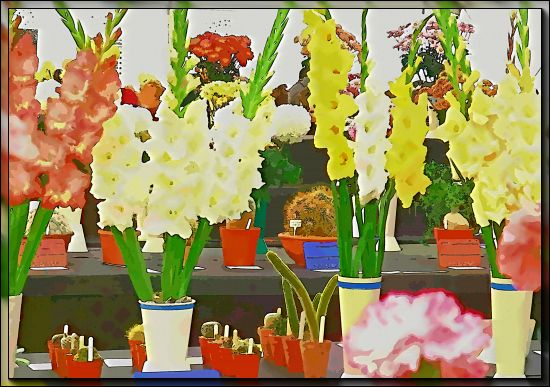 Steyning Horticultural Society Autumn Show