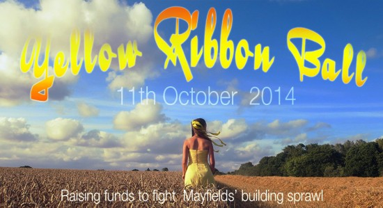 LAMBS Mayfield Yellow Ribbon Ball