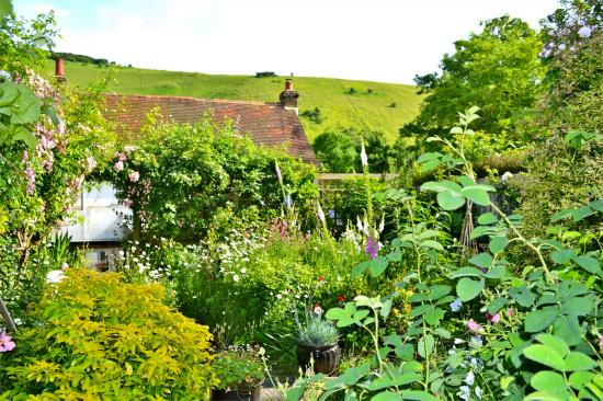 The garden of 1 Southview Cottages, Fulking