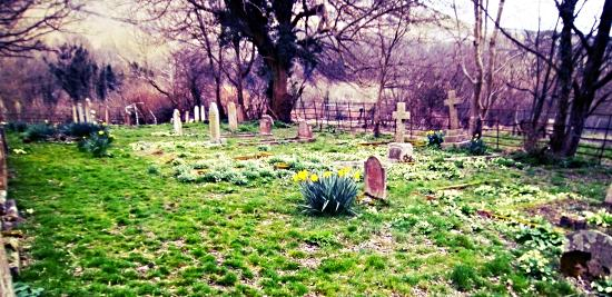 Edburton churchyard