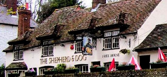 Jazzed up image of Shepherd & Dog