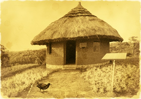 Mud hut with solar panel and coot Twineham solar farm Phillip Coote