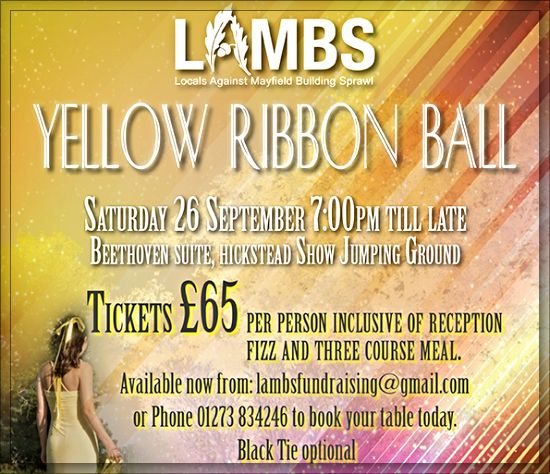 LAMBS Yellow Ribbon Ball 2015