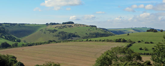 The Dyke from Newtimber Hill