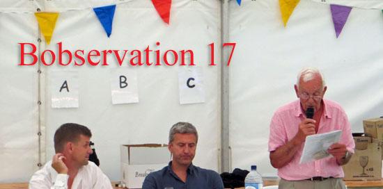 Bobservation_17