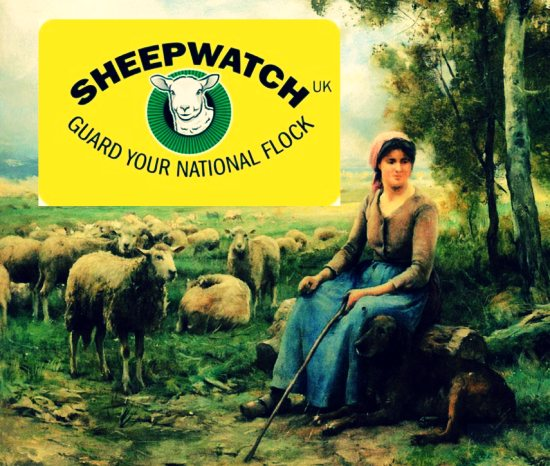 SheepWatch UK
