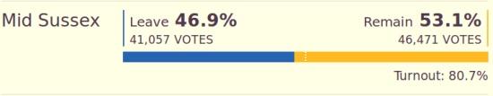 Mid Sussex referendum result