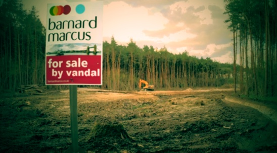Pondtail Wood for sale by vandal