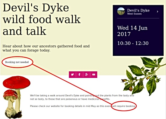 Devil's Dyke wild food walk and talk