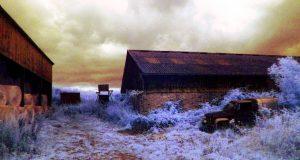 Edburton Sands