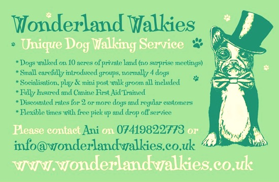 Wonderland Walkies