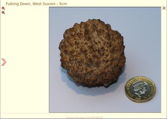 Marcasite nodule found on Fulking Down 5cm