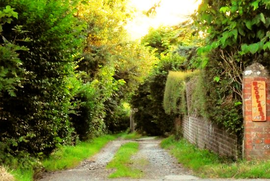 The Backway, Fulking