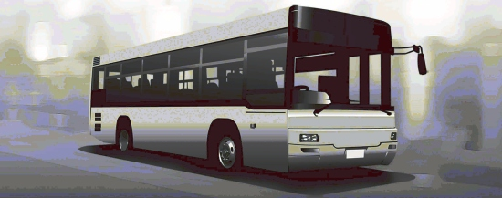 Bus Strategy Consultation