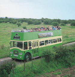 Downs Bus