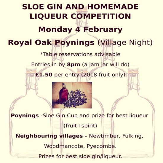 Sloe Gin Night 2019