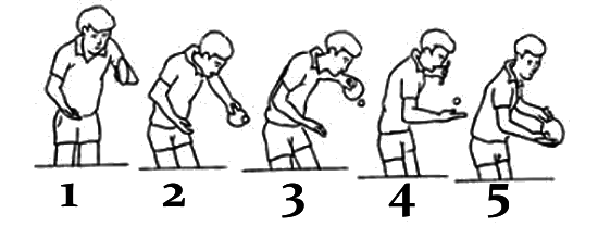 table tennis sequence