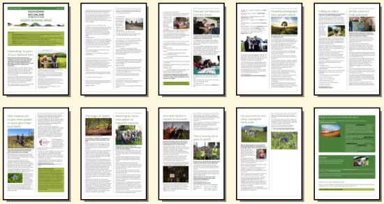 March 2020 South Downs Newsletter