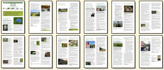 April 2020 South Downs Newsletter