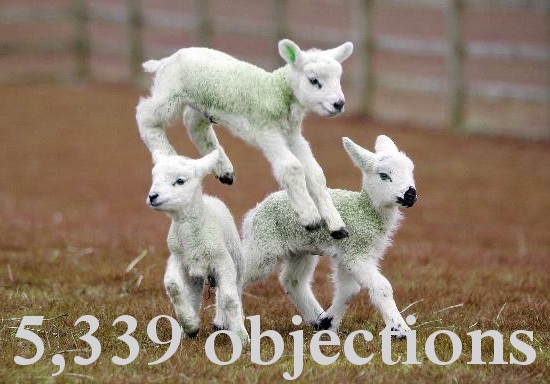 5,339 objections