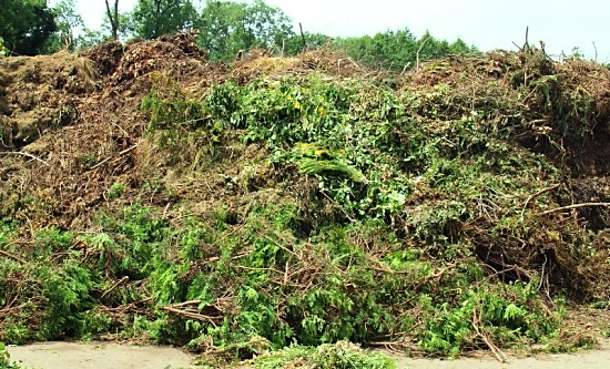 green waste uncancelled