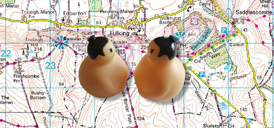 Sumo wrestlers over map of Fulking